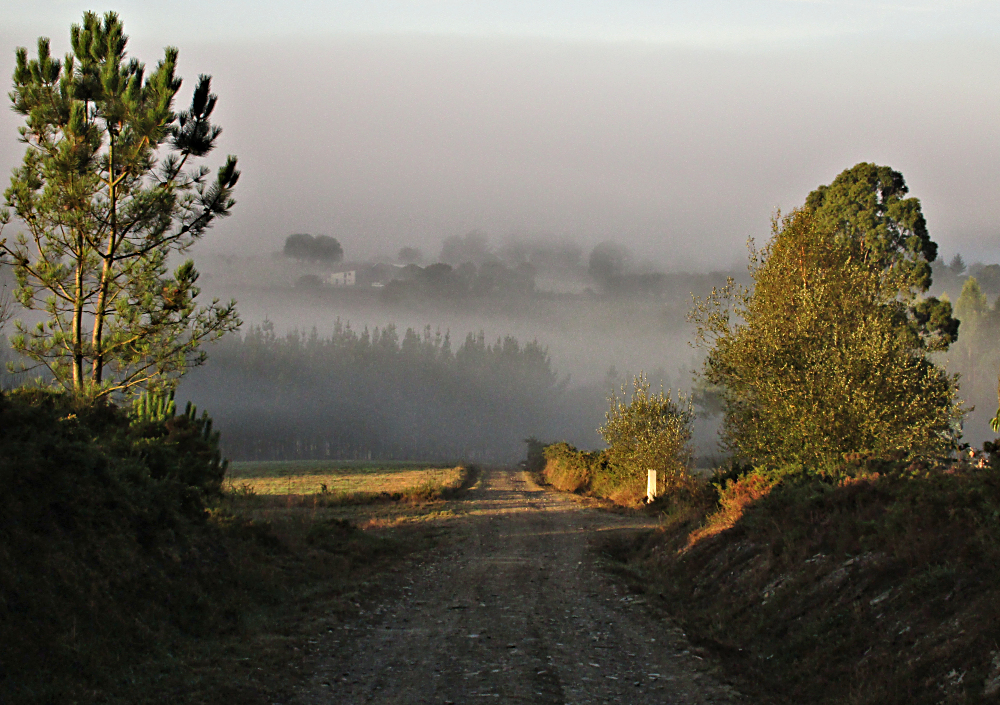 Misty morning on the Camino Primitivo