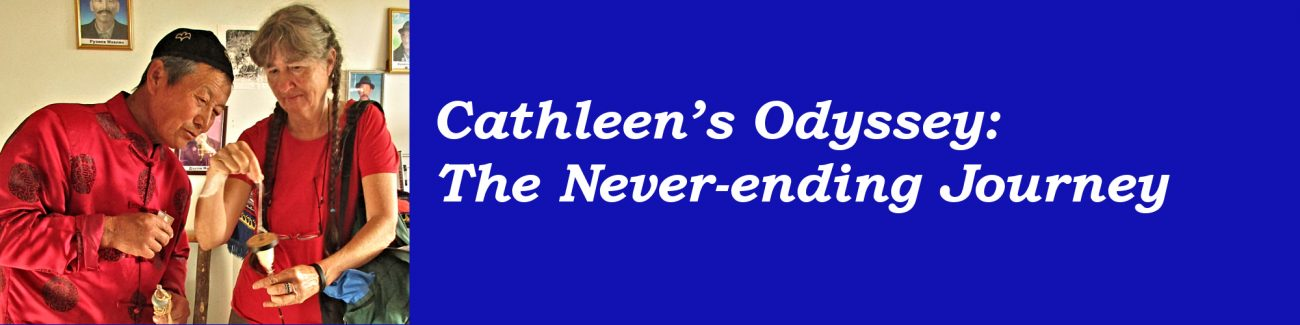 Workshop topic: Cathleen's Odyssey: The Never-ending Journey