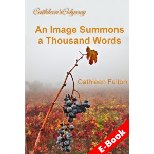 Book cover for Image Summons 1000 Words